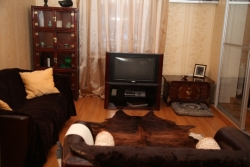 Nemiga subway station, 2-two-bedroom apartment for rent in Minsk, Gorodskoj Val street, house number 10
